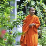 Young Buddhist Monk Smiling